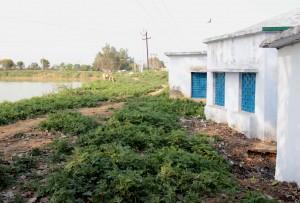 13-03-14 Panwadi Kasba - School Boundary