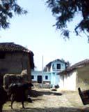 taza mahoba