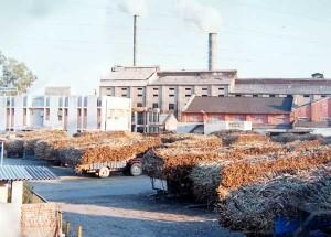 12-12-13 Kshetriya - Sugarmill in UP