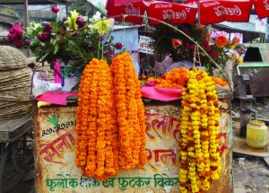 02-01-14 Manoranjan - Karvi Phool